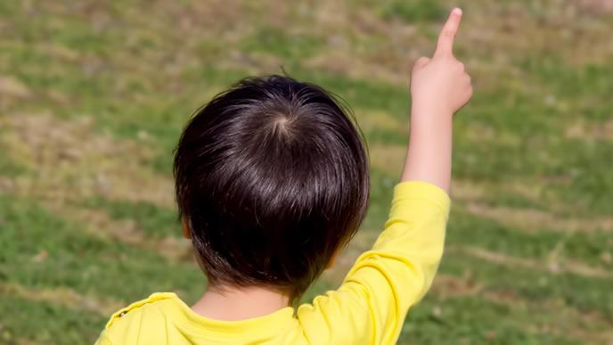 芝生の公園で何かを見つけた子供
