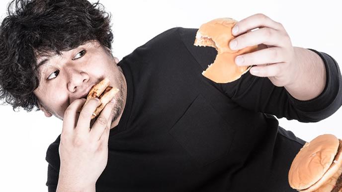 ハンバーガーを消費する男性