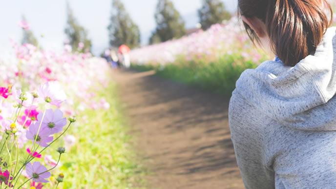 コスモスの花畑を走る女性