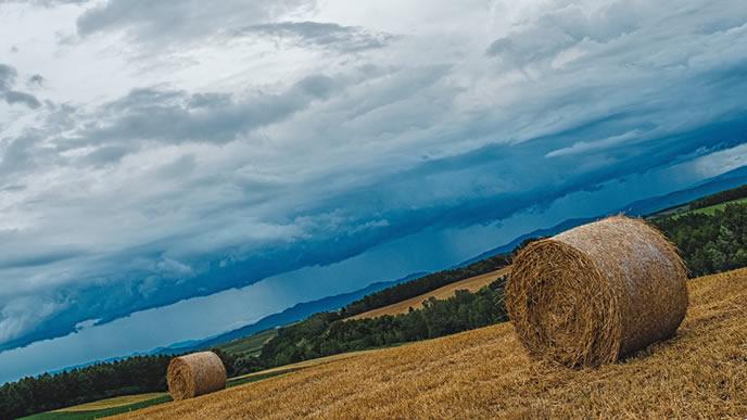 北海道の大地と干草ロール