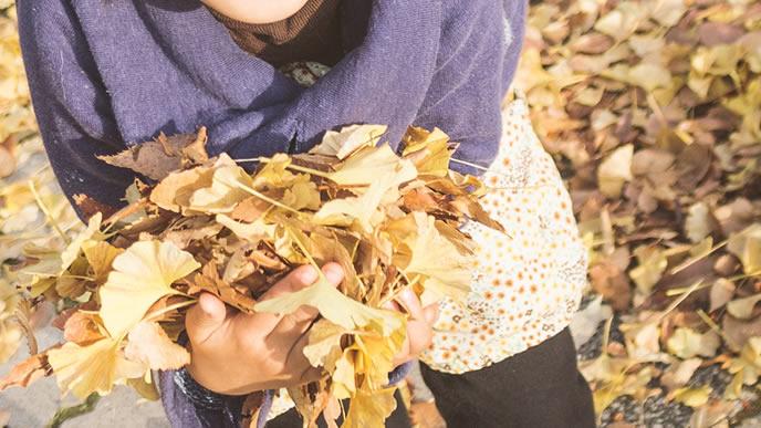 抱えきれないほどの落ち葉を拾う子供
