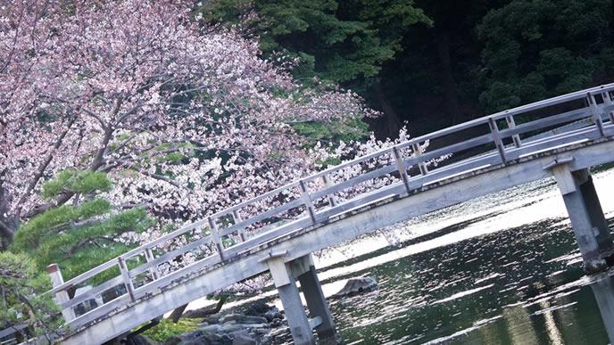 橋と桜が綺麗な4月の風景