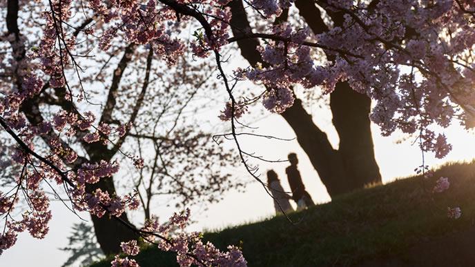 晩秋に散歩をする夫婦