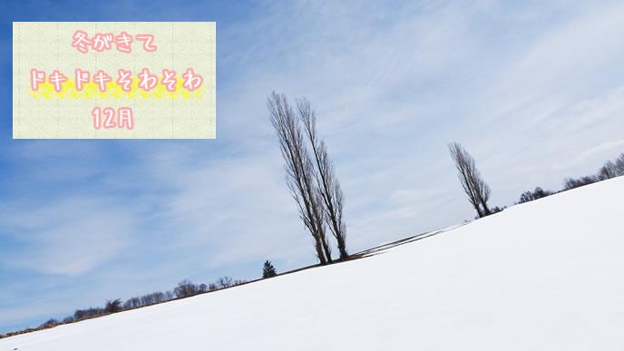 冬の始まりが感じられる風景