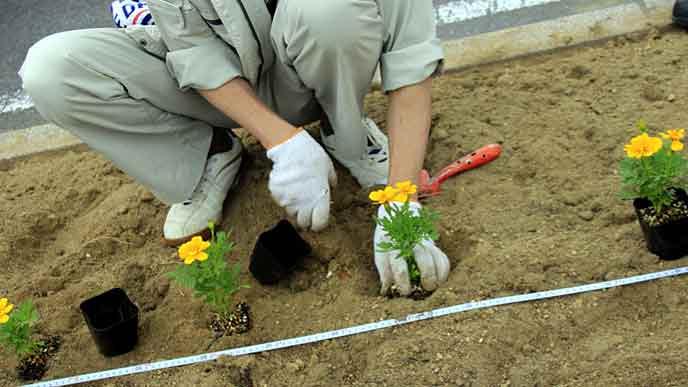 地域活動で花壇を整備