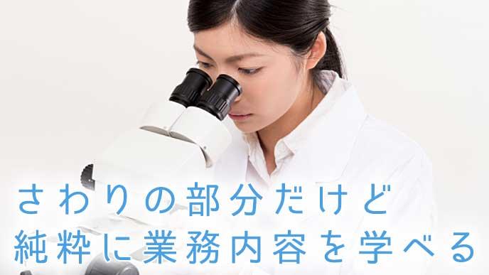 顕微鏡を覗く白衣を着た女性