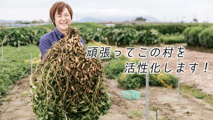 畑で落花生を収穫している男性