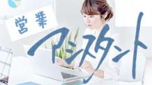sales-assistant-description-icatch
