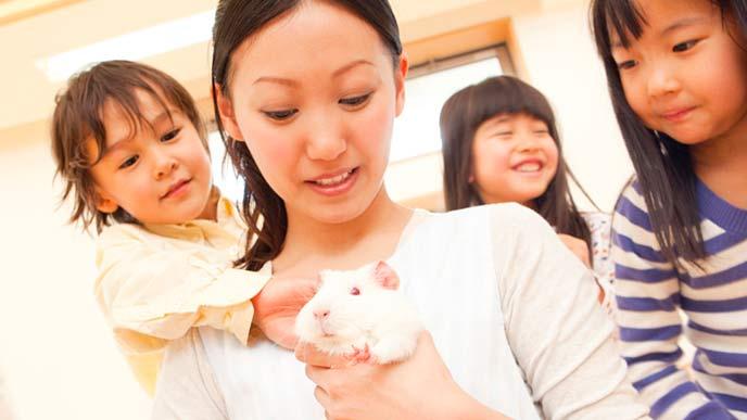 子供とモルモットを飼育する保育士