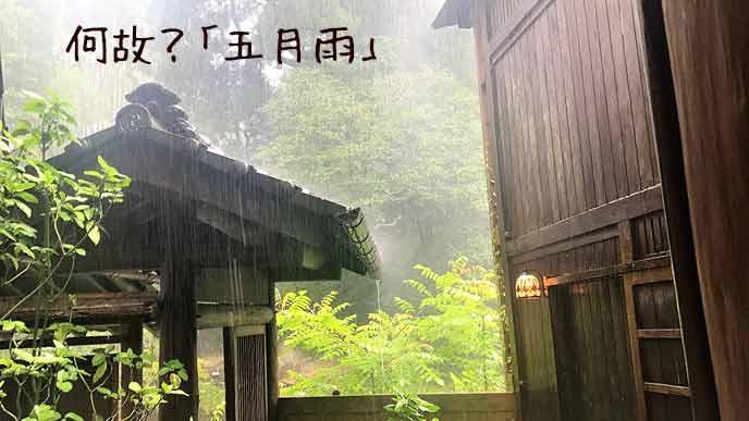 日本の家屋に五月雨