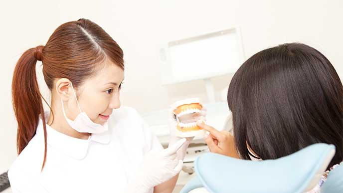 歯科助手のアルバイトをしてる女性