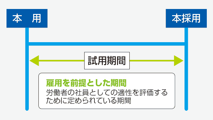 図解:試用期間の期間