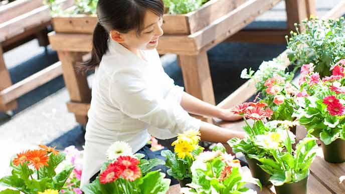 花の手入れをする女性店員