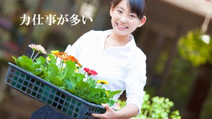 花の鉢植えのトレーを運ぶ女性