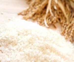 ふるさと納税の返礼品「お米」