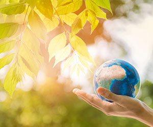 地球と葉っぱ