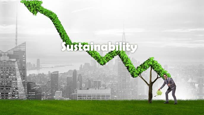 持続可能な成長モデルのイメージ